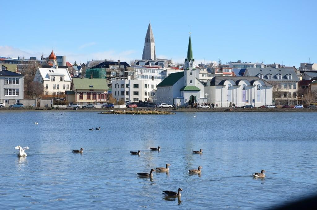Reykjavík Pond - City Centre - Iceland accessible tour