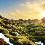 Iceland South coast - 7 days Iceland self-drive tour
