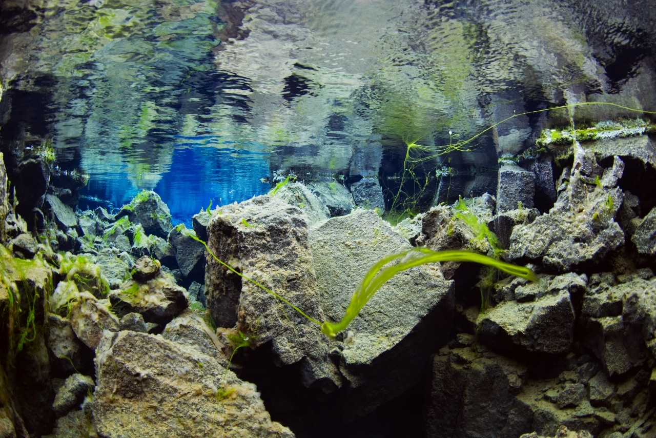 Diving in Silfra Iceland