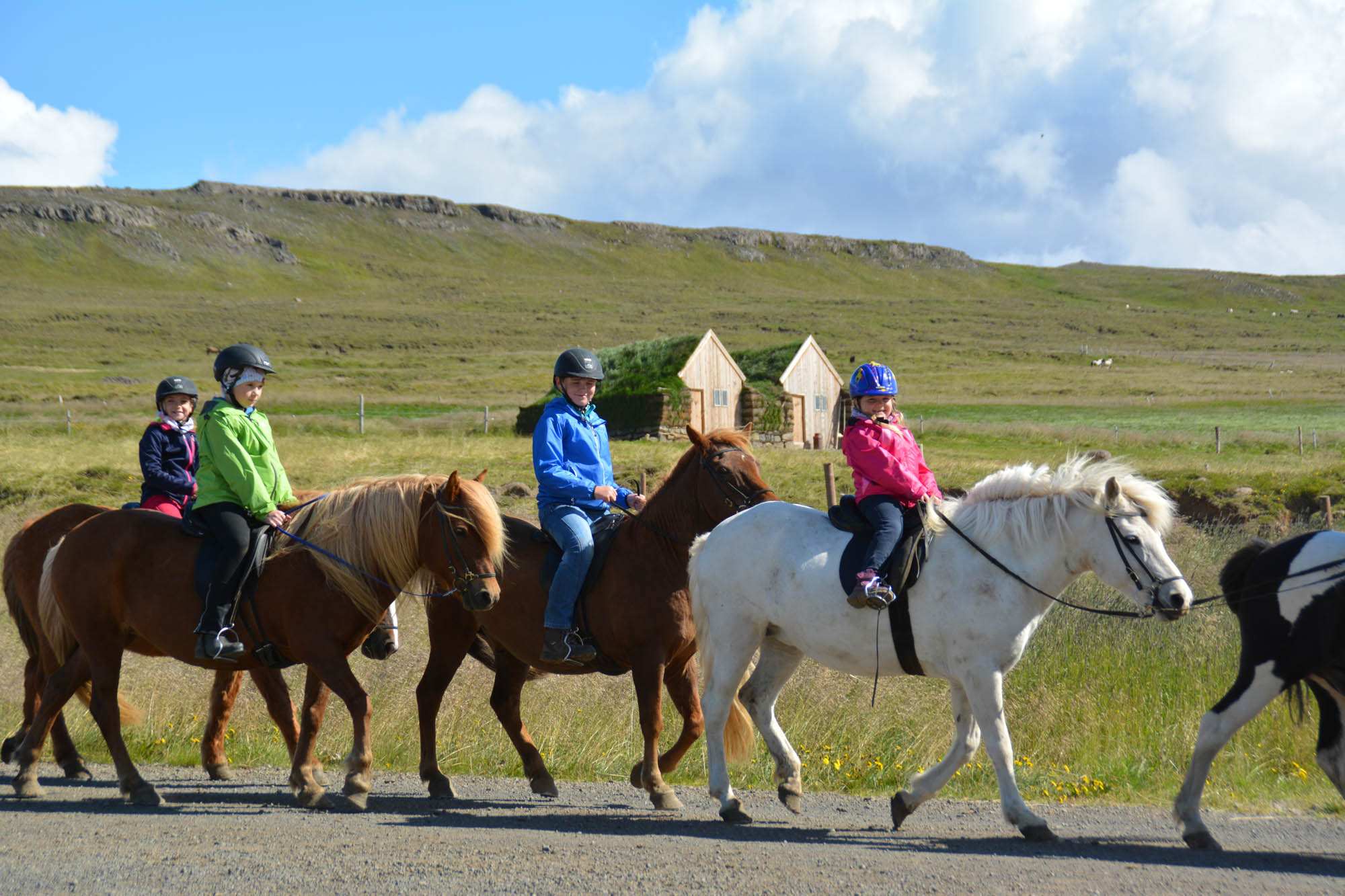 horse riding skagafjordur