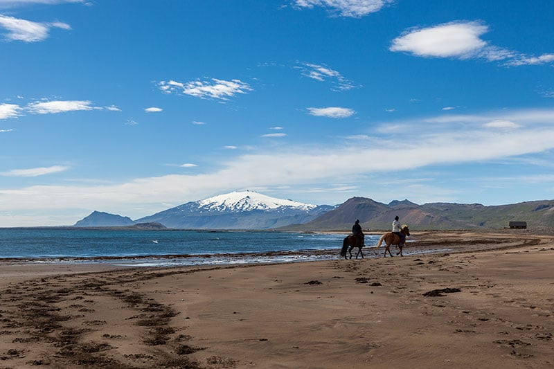 Horseback Riding Tour at Beach in Snaefellsnes