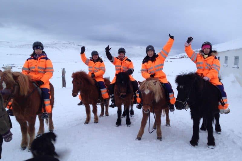 Horseback Riding Near Akureyri