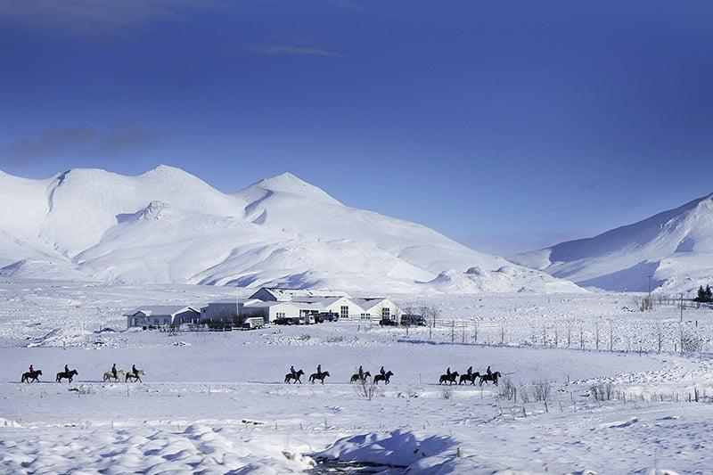 Horseback Riding near Reykjavik