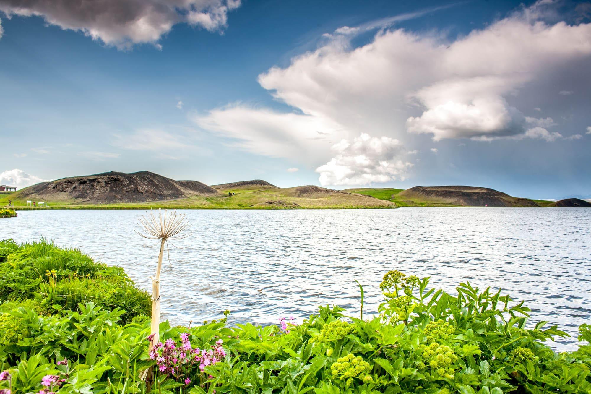 lake myvatn from reykjavik