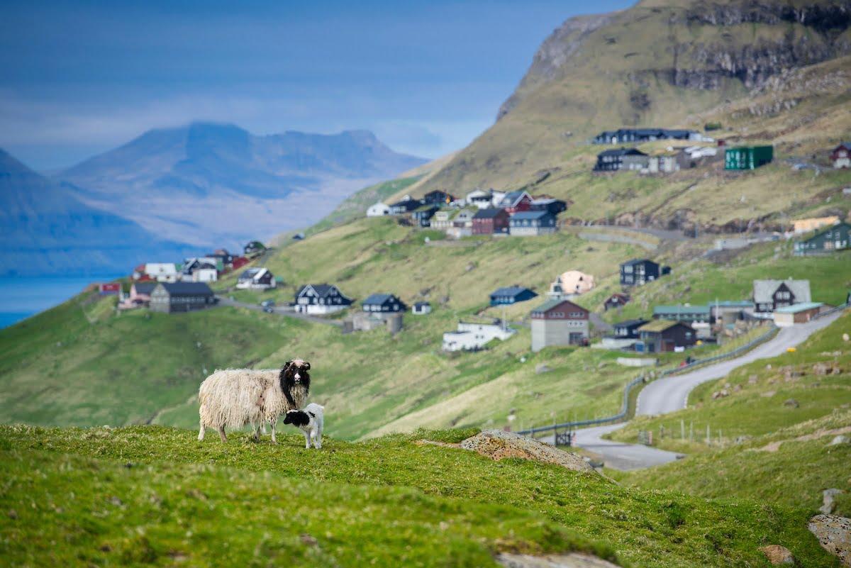 Faroe Islands Holiday - Velbastadur - Photo by William Anderson