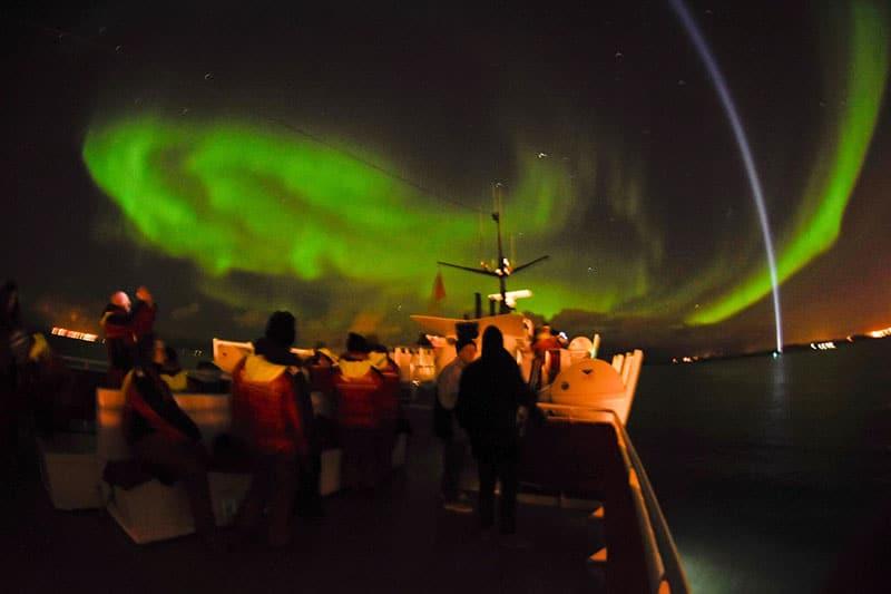 Reykjavik Northern Lights Tour