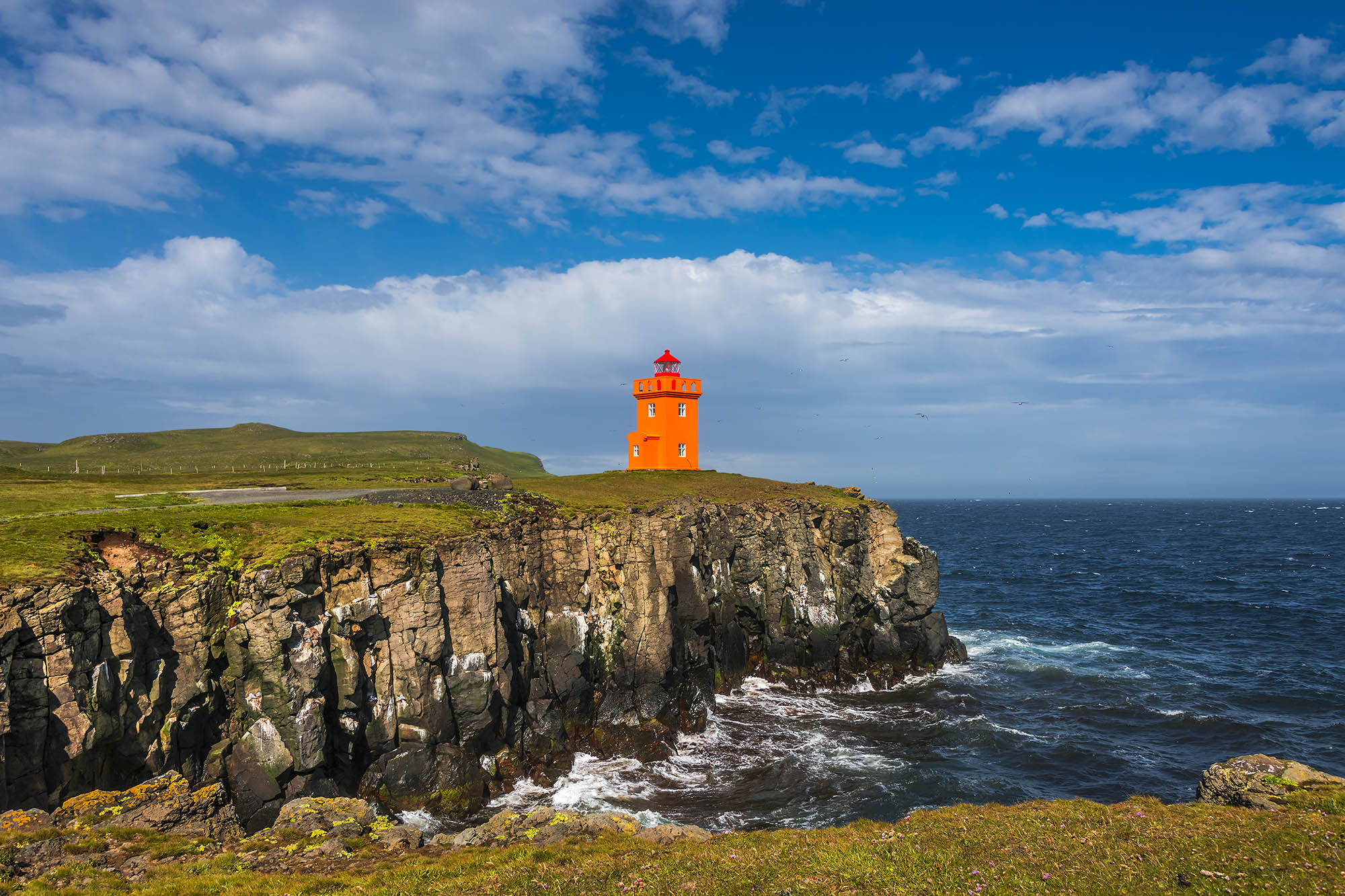 iceland grimsey island tour