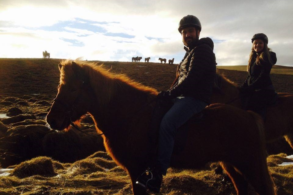 horseback riding in south iceland