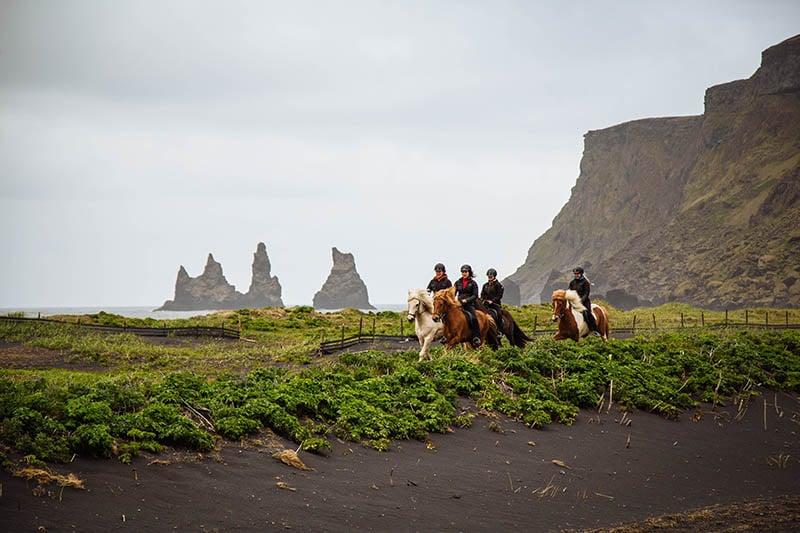 horseback riding tour vik