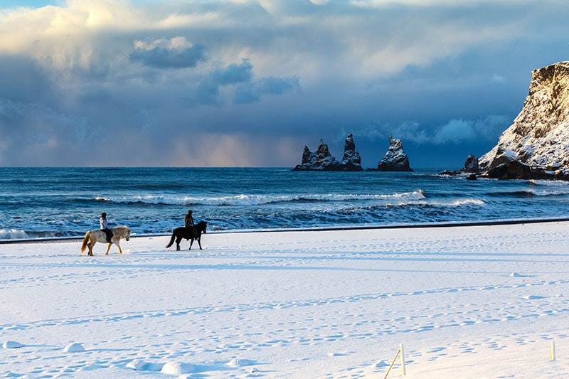 Horse Riding in Vik – Easy Ride on the Black Sand Beach