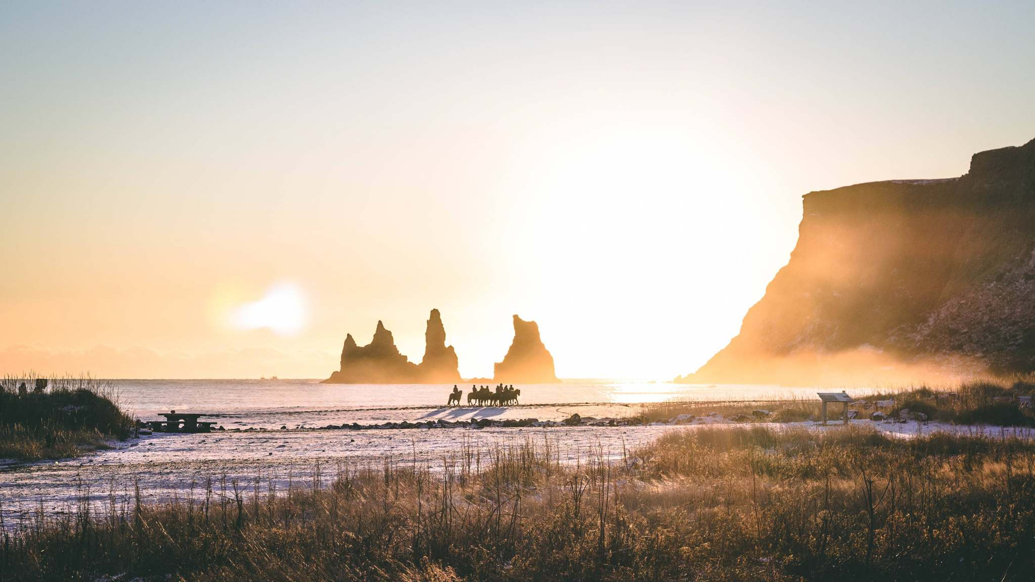 Horse Riding Vik – Easy Ride on the Black Sand Beach