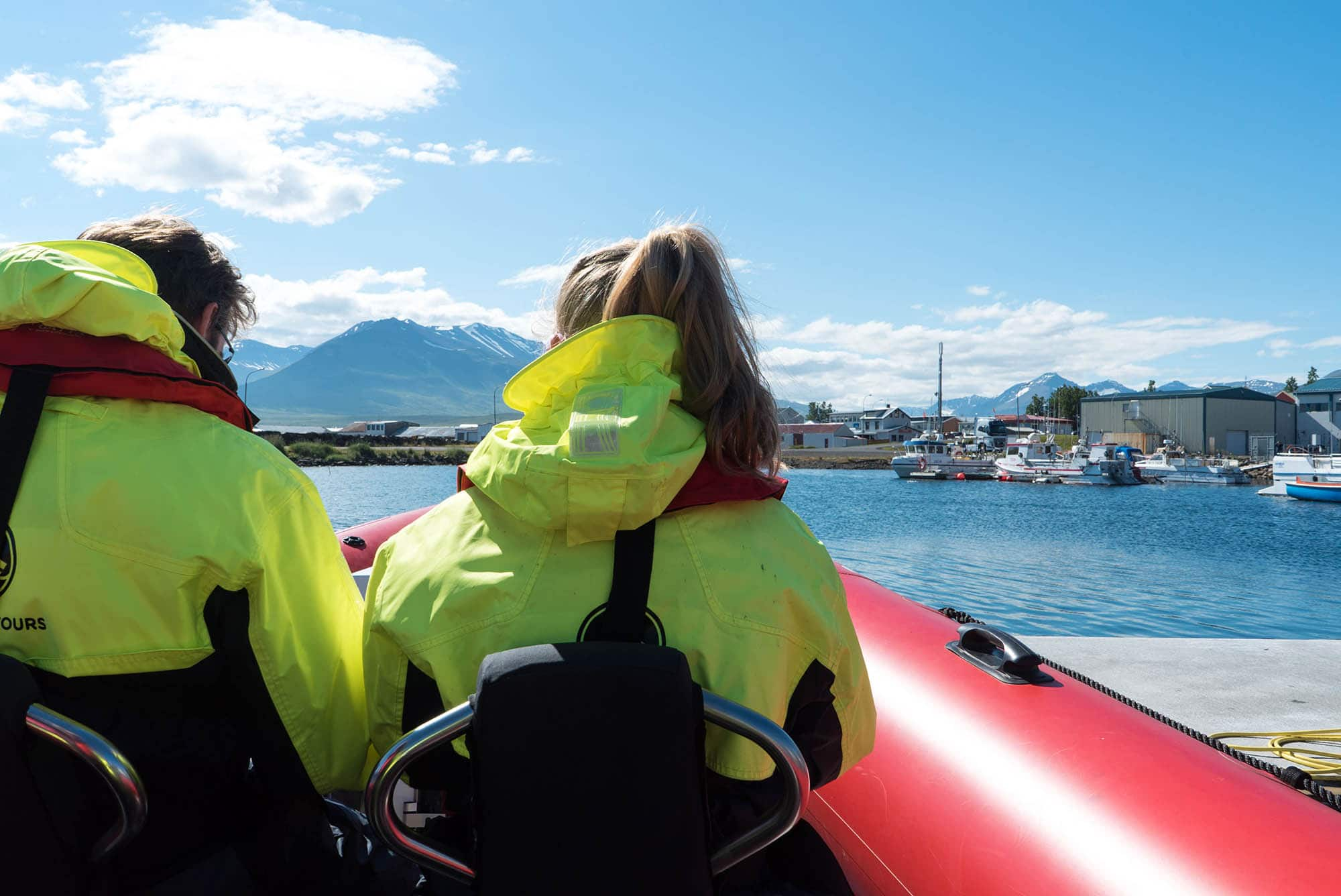 iceland whale watching in dalvik